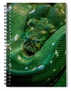 Green Tree Python Curled Spiral Notebook
