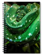 Green Tree Python Spiral Notebook
