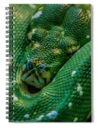 green tree python Macro Spiral Notebook