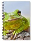 Green Treefrog Spiral Notebook