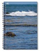 Green Turtle Surf Spiral Notebook