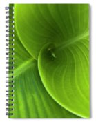 Green Twin Leaves Spiral Notebook