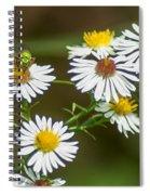 Green Wasp And Daisies Spiral Notebook