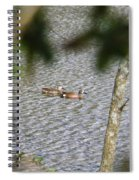 Green Winged Teal 2 Spiral Notebook