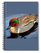 Green Winged Teal  Duck  Spiral Notebook