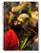 Greenbriar Leaf And Wintergreen Seedpod Spiral Notebook