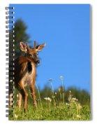 Greener Fields Spiral Notebook