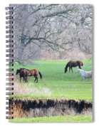 Greener Pastures Spiral Notebook