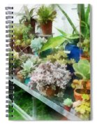 Greenhouse With Cactus Spiral Notebook