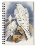 Greenland Falcon Spiral Notebook