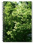 Greenleaves Spiral Notebook