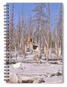Lonely Cabin Spiral Notebook
