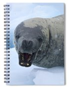 Greetings From Antarctica.. Spiral Notebook