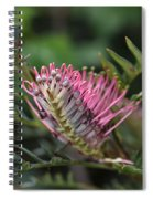 Grevillea  Spiral Notebook