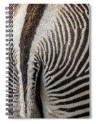 Grevy's Zebra 5 Spiral Notebook