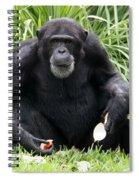 Grey Beard Spiral Notebook