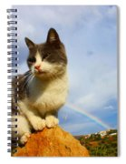 Grey Cat And Rainbow Spiral Notebook