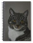 Grey Cat Spiral Notebook