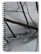 Grey Days Of November Spiral Notebook