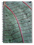 Grey Leaf With Purple Veins 2 Spiral Notebook
