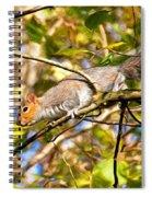 Grey Squirrel - Impressions Spiral Notebook