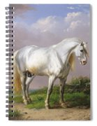 Grey Stallion Spiral Notebook