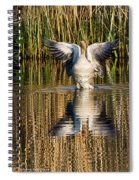 Greylag Goose Family Spiral Notebook