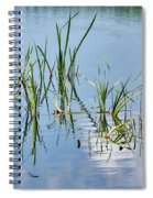 Greylake Reflections Spiral Notebook