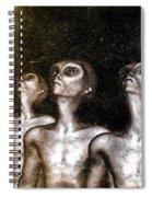 Greys Spiral Notebook