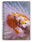 Grid Above Flowers Spiral Notebook