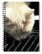 Grill Grate Gato Spiral Notebook