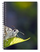 Grizzled Skipper Two Spiral Notebook