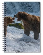 Grizzlies Fighting Spiral Notebook