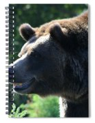 Grizzly-7755 Spiral Notebook