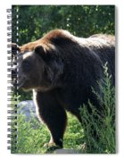 Grizzly-7756 Spiral Notebook
