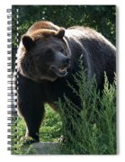 Grizzly-7759 Spiral Notebook