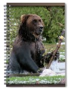 Grizzly Bear 08 Spiral Notebook