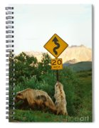 Grizzly Cubs Spiral Notebook