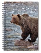 Grizzly River Spiral Notebook