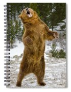 Grizzly Standing Spiral Notebook
