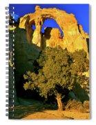 Grosvenor Arch At Sunset Spiral Notebook