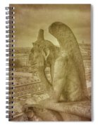 Grotesque From Notre Dame Spiral Notebook