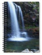 Grotto Falls Great Smoky Mountains Spiral Notebook