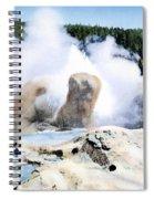 Grotto Geyser Yellowstone Np Spiral Notebook