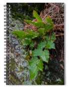 Ground Cover Spiral Notebook