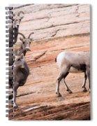 Group Leader Spiral Notebook