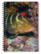 Grouper Spiral Notebook