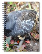 Grouse Spiral Notebook