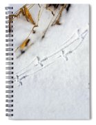 Grouse Tracks Spiral Notebook