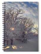 Grove And Road - Winter Spiral Notebook